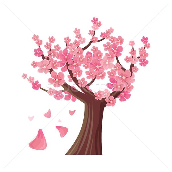 Sakura Tree Isolated. Cherry Blossom. Vector Stock photo © robuart