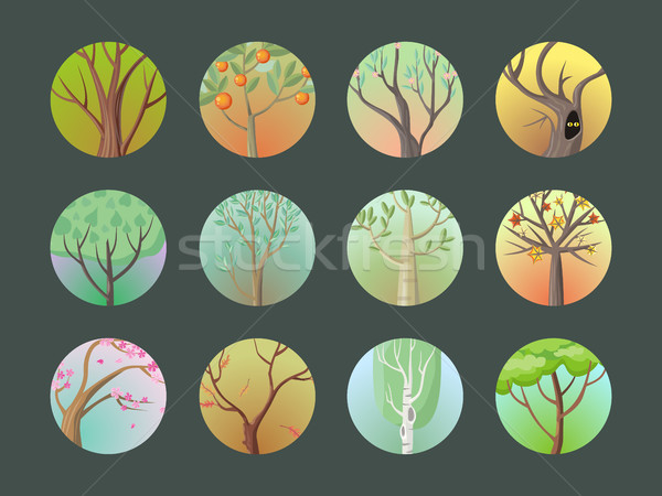 Vector Trees Set. Collection of Different Types Stock photo © robuart