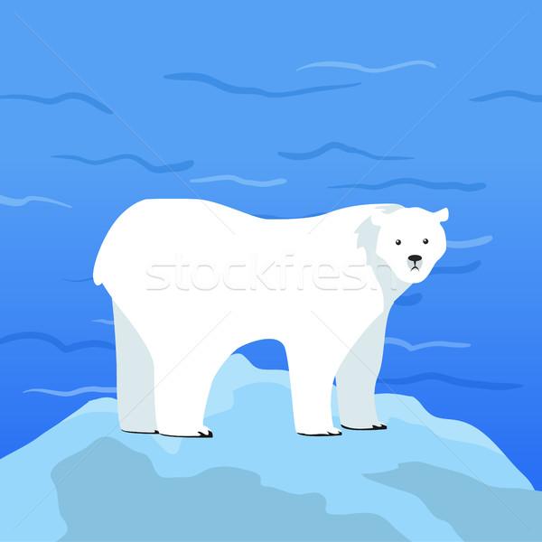 Jegesmedve darab jég sarkköri óceán vadállat Stock fotó © robuart