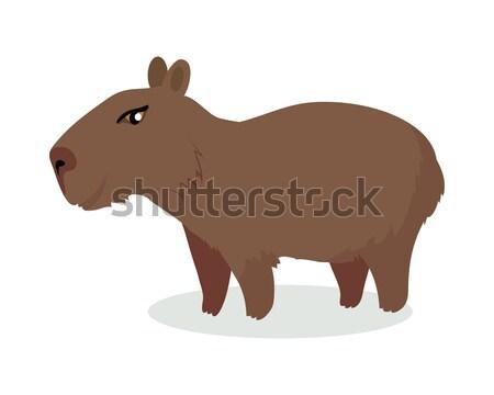 Capybara Cartoon Icon in Flat Design Stock photo © robuart