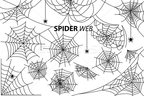 Spider Web Collection of Illustrations on White Stock photo © robuart