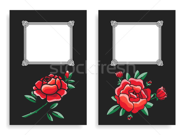 Roses and Frames Posters Set Vector Illustration Stock photo © robuart