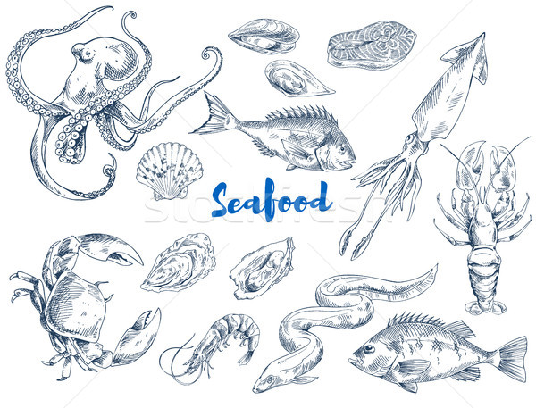Exotic Seafood Monochrome Sketch Illustrations Set Stock photo © robuart