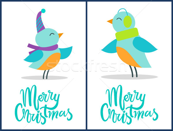 Merry Christmas Birds Festive Congratulations Stock photo © robuart