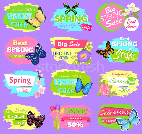 Discount Spring Collection Vector Illustration Stock photo © robuart