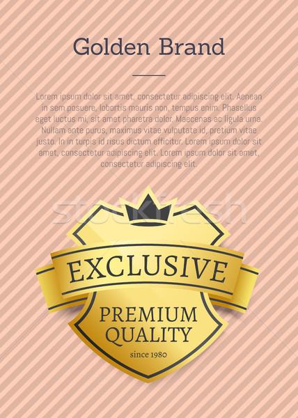Exclusief premie kwaliteit logo gouden merk Stockfoto © robuart