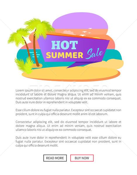 Yaz sıcak satış poster tropikal plaj palmiye ağaçları Stok fotoğraf © robuart