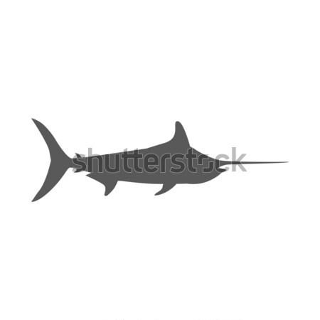 Vis icon ontwerp geïsoleerd zee Stockfoto © robuart