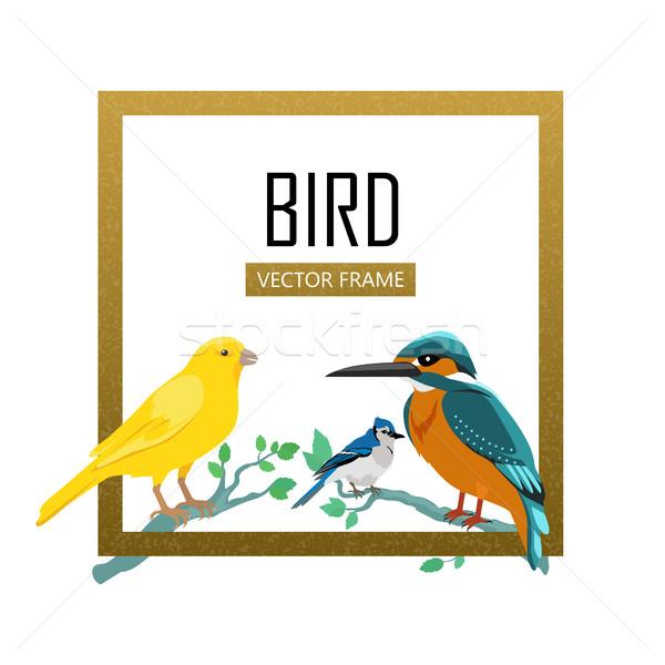 Birds Frame Flat Design Vector Illustration Stock photo © robuart