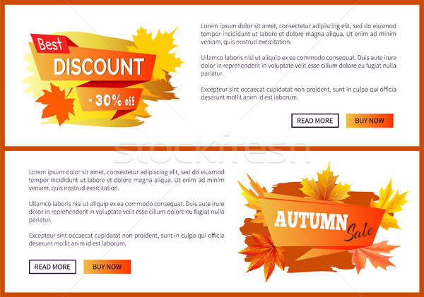 Discounts Offer Special Price Invitation Vouchers Stock photo © robuart