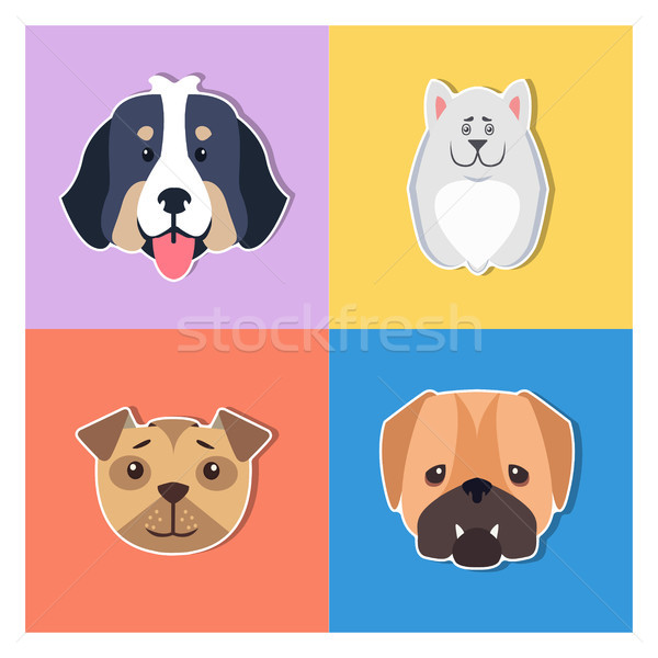 Cute perros Cartoon vector funny Foto stock © robuart