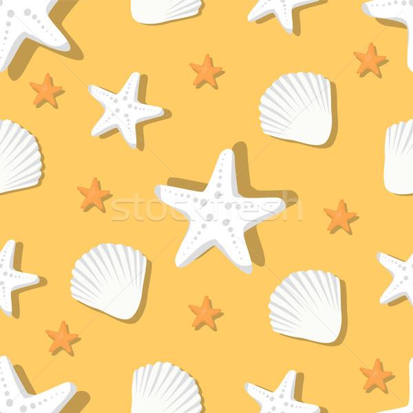 Marine conchiglie starfish bianco acquatico Foto d'archivio © robuart