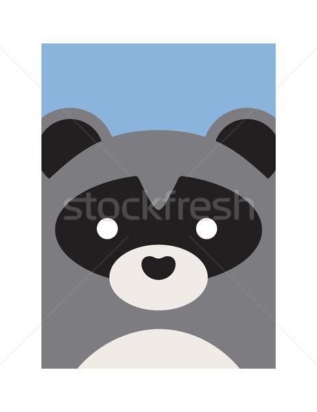 Cute Cartoon Raccon, Vector Animal Illustration Stock photo © robuart