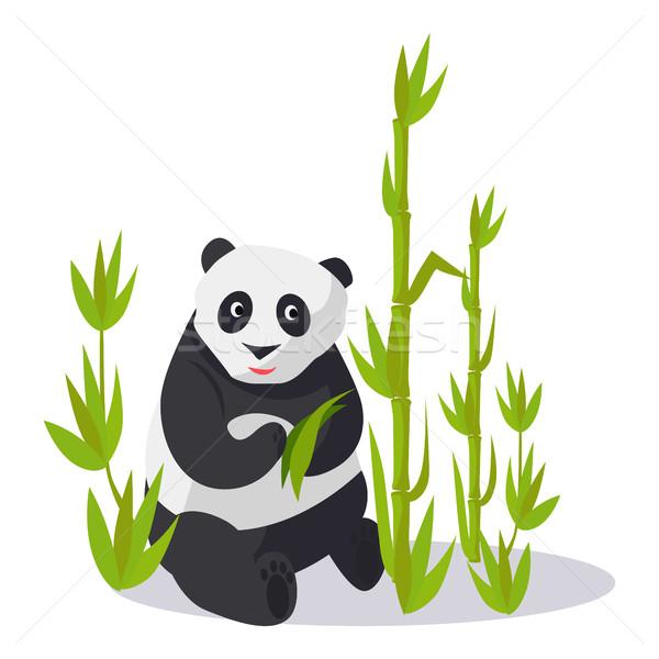 Panda vergadering bamboe groene bladeren jonge geïsoleerd Stockfoto © robuart