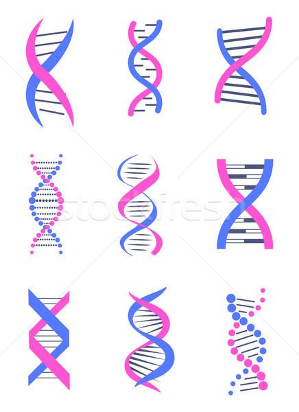 Сток-фото: набор · ДНК · потока · подобно · цепями · красочный