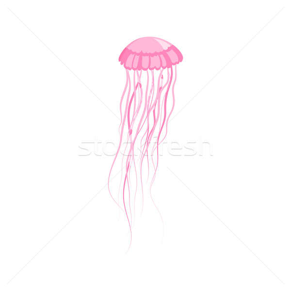 Pink Jellyfish Floating in Space Stock photo © robuart