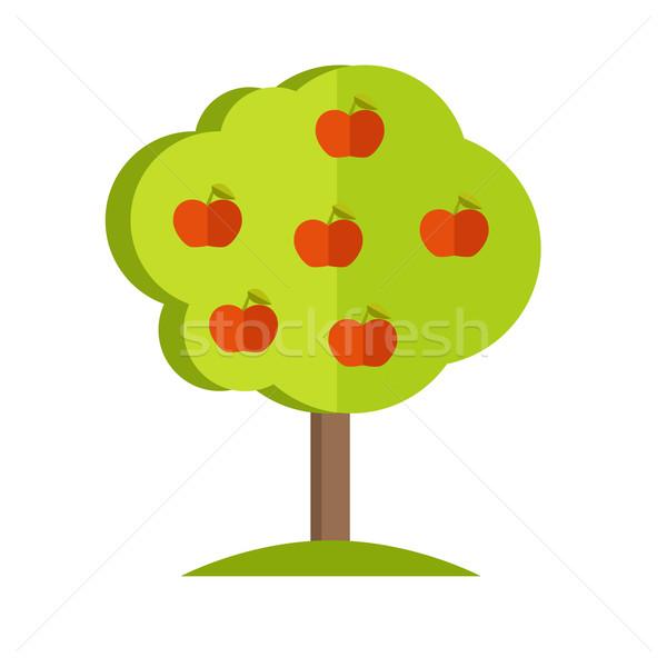 Apple Tree vector illustration in flat style design.  Stock photo © robuart