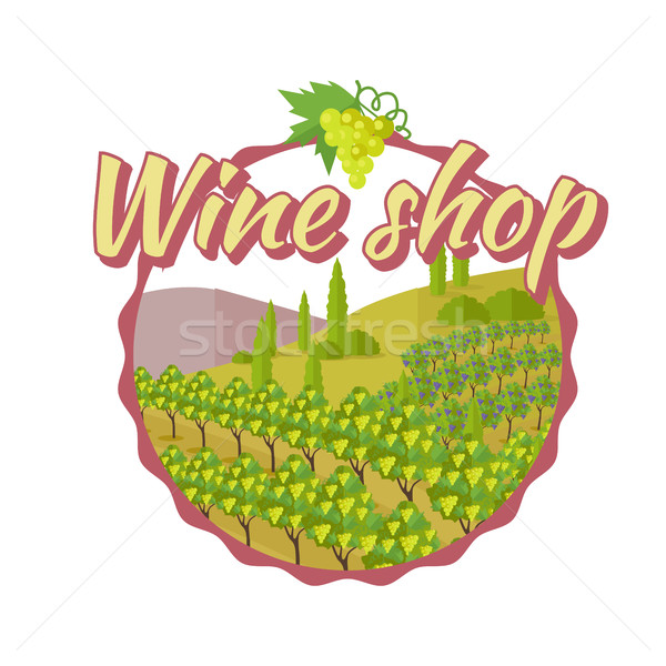 Wine Shop Poster. Winemaking Concept Logo. Stock photo © robuart