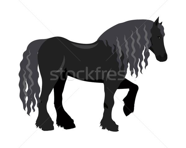 馬 デザイン 黒 ベクトル ストックフォト © robuart