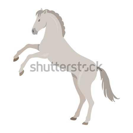 Rearing Grey Horse Illustration in Flat Design Stock photo © robuart