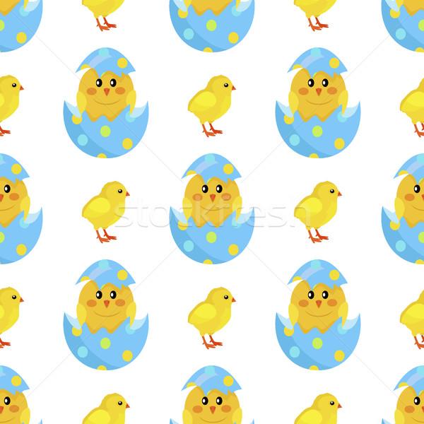 Tyúk újszülött csirke kagyló vektor színes Stock fotó © robuart