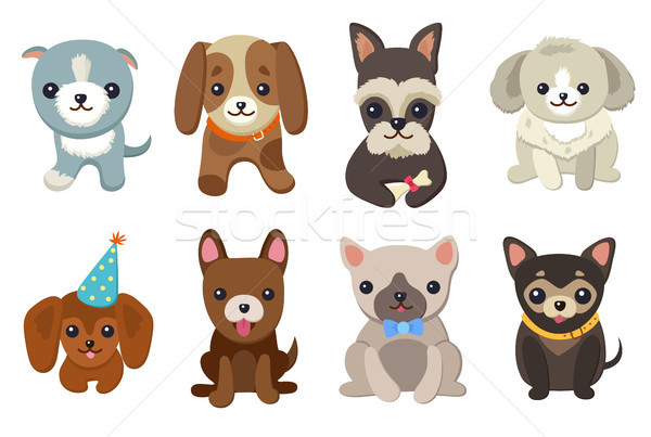 Dogs and Puppies Set Poster Vector Illustration Stock photo © robuart