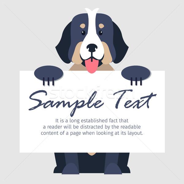 Bernese mountain dog ilustração bonitinho abrir texto isolado Foto stock © robuart
