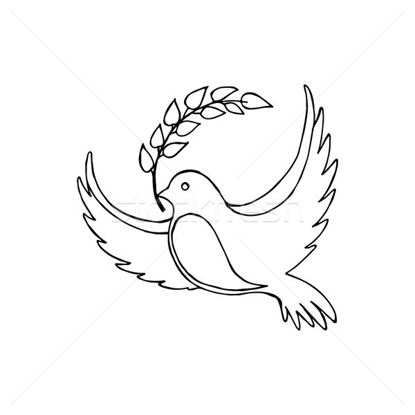 Dove of Peace With a Twig Vector Illustration Stock photo © robuart