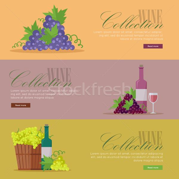 Ingesteld elite wijn posters Stockfoto © robuart