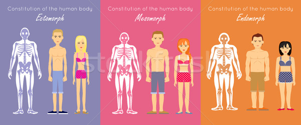 Human Body Constitution Flat Design Vector Concept Stock photo © robuart