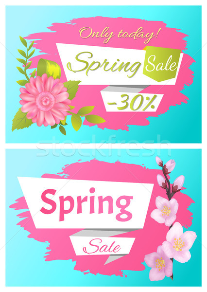 Voorjaar verkoop advertentie label tak sakura Stockfoto © robuart