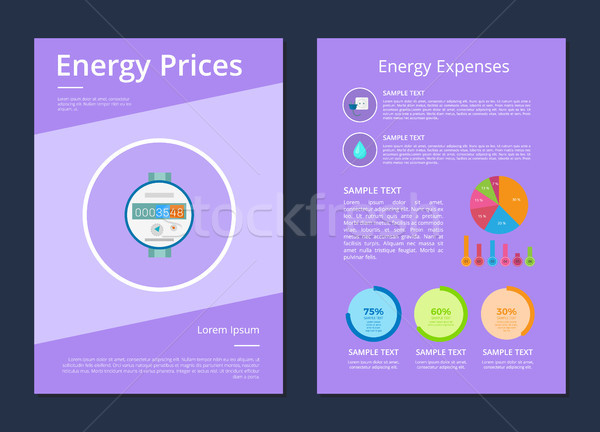 Energy Prices and Expenses Two Statistics Posters Stock photo © robuart
