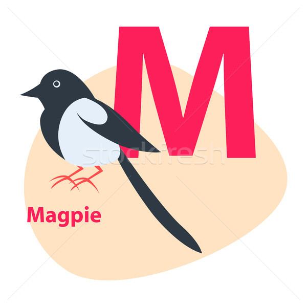 Zoo ABC Letter with Cute Magpie Cartoon Vector Stock photo © robuart