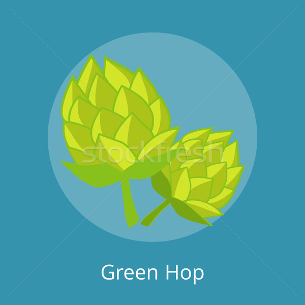 Green Hop Vector Illustration Isolated Icons Stock photo © robuart