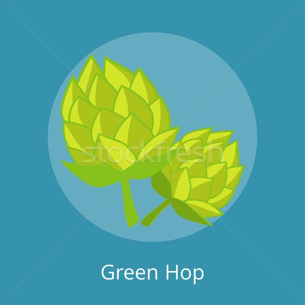 зеленый хмель изолированный иконки синий завода Сток-фото © robuart