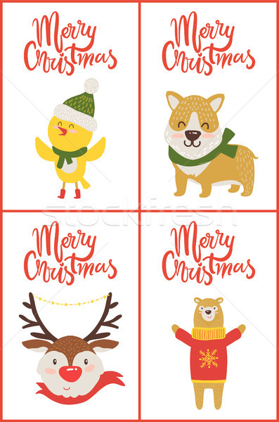 Merry Christmas Collection on Vector Illustration Stock photo © robuart