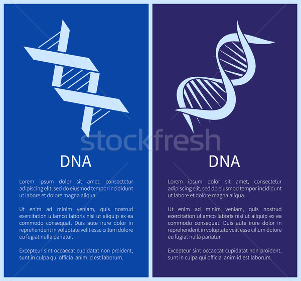 Dna Set weiß isoliert blau Hintergrund Stock foto © robuart