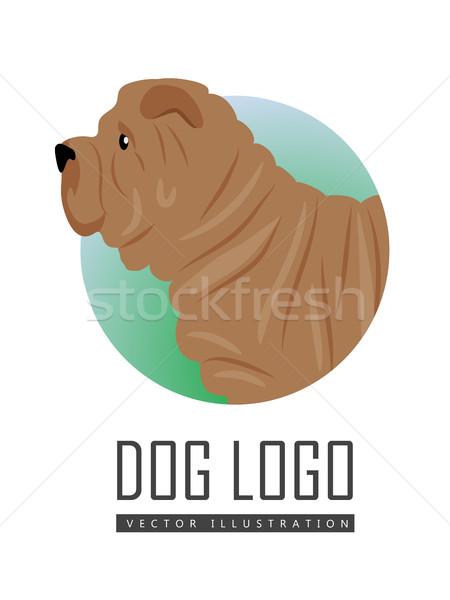 Shar Pei Dog Logo on White Background Stock photo © robuart