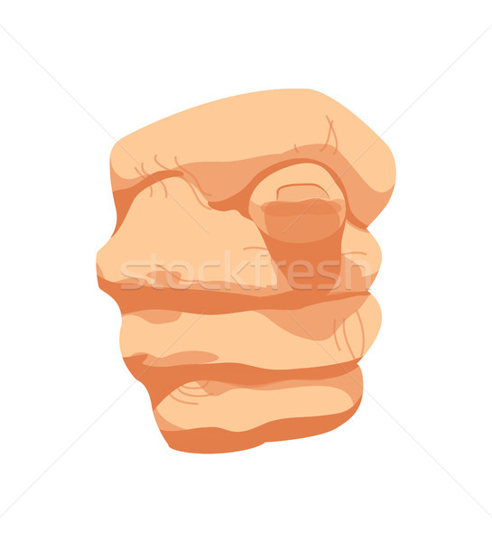 Fig Sign Hands Gesture Poster Vector Illustration Stock photo © robuart