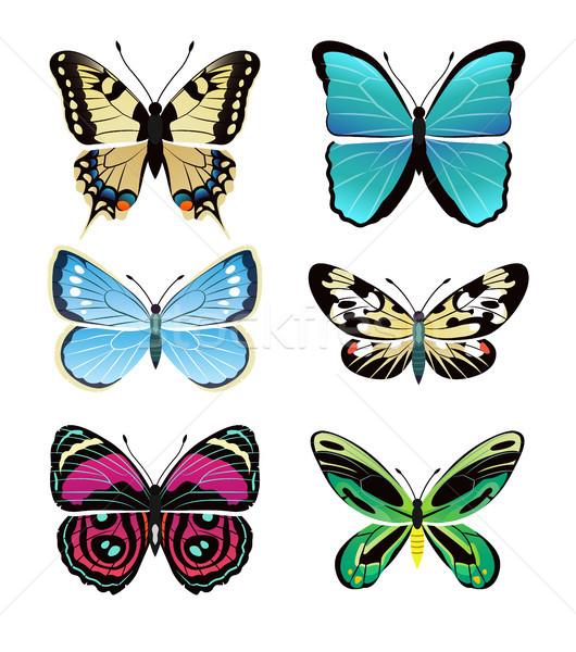 Stockfoto: Vlinders · collectie · kleurrijk · vleugels · ingesteld · geïsoleerd