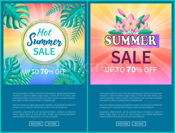 Hot Summer Sale Poster Up to 70 Off Banner Frame Stock photo © robuart