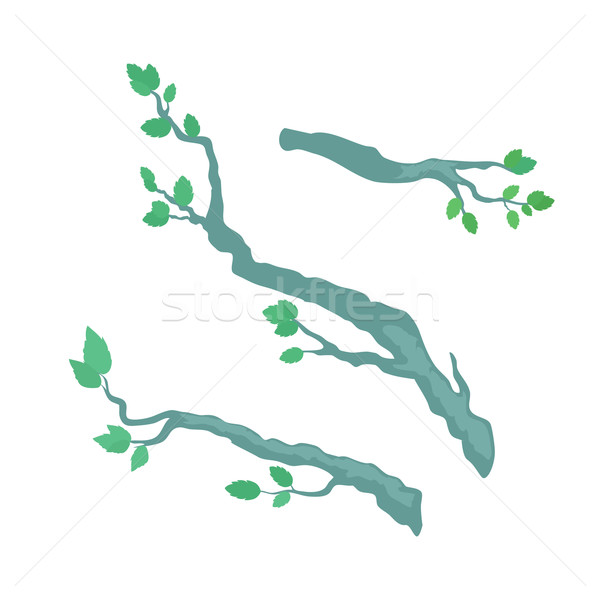 Tree Brunches Flat Design Vector Template Stock photo © robuart