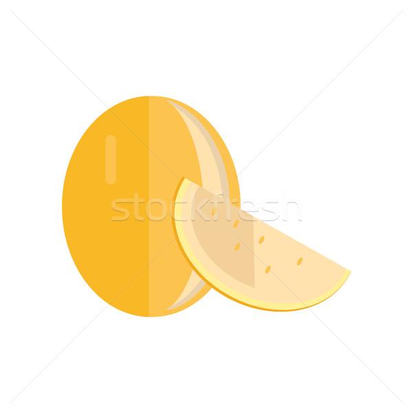 Kavun stil dizayn vektör meyve örnek Stok fotoğraf © robuart