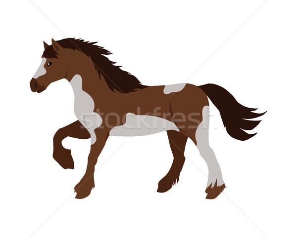Stock photo: Horse Vector Illustration in Flat Design