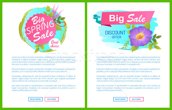 Big Spring Sale Discounts Offer Posters Set Flower Stock photo © robuart