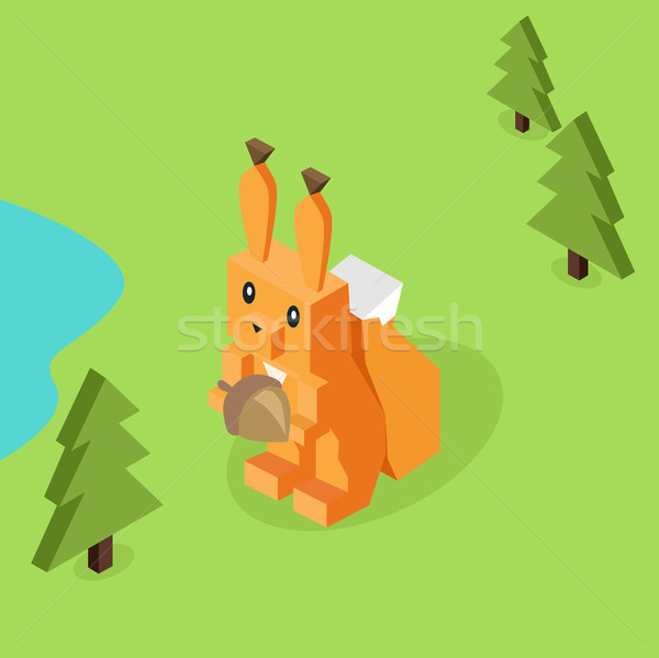 Wild Animal Squirrel Isometric 3d Design Stock photo © robuart