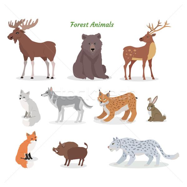Orman hayvanlar ayarlamak yaban hayatı vektör Stok fotoğraf © robuart