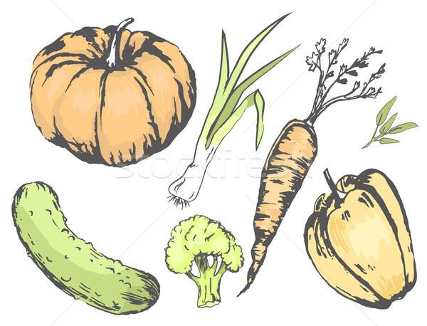 Gráfico agrícola cosecha hortalizas establecer colección Foto stock © robuart