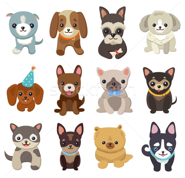 Stock photo: Dogs and Puppies Set Poster Vector Illustration