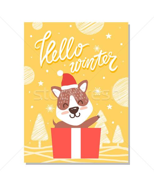 Hello Winter Cute Puppy on Vector Illustration Stock photo © robuart